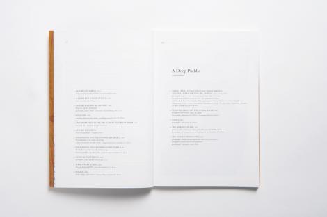A Deep Puddle & Piquillo ou le Rêve de Mr. Hululle - 3/7